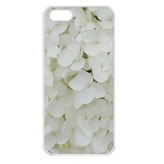 Hydrangea Flowers Blossom White Floral Photography Elegant Bridal Chic  Apple iPhone 5 Seamless Case (White)