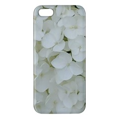 Hydrangea Flowers Blossom White Floral Photography Elegant Bridal Chic  Apple iPhone 5 Premium Hardshell Case