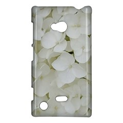Hydrangea Flowers Blossom White Floral Photography Elegant Bridal Chic  Nokia Lumia 720