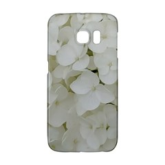 Hydrangea Flowers Blossom White Floral Photography Elegant Bridal Chic  Galaxy S6 Edge