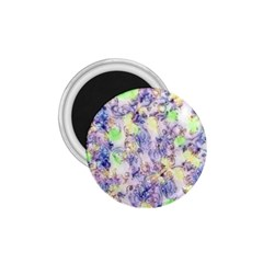 Softly Floral B 1.75  Magnets