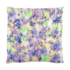 Softly Floral B Standard Cushion Case (Two Sides)