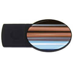 Color Screen Grinding Usb Flash Drive Oval (2 Gb)