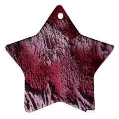 Texture Background Star Ornament (Two Sides)