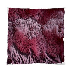 Texture Background Standard Cushion Case (One Side)