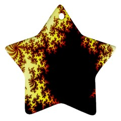 A Fractal Image Star Ornament (two Sides)