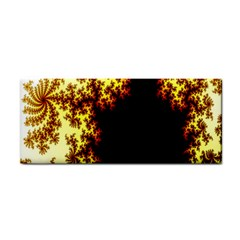 A Fractal Image Cosmetic Storage Cases