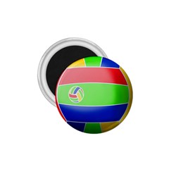 Balloon Volleyball Ball Sport 1 75  Magnets