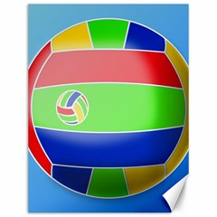 Balloon Volleyball Ball Sport Canvas 12  X 16