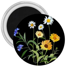 Flowers Of The Field 3  Magnets