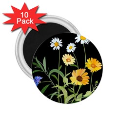Flowers Of The Field 2.25  Magnets (10 pack)