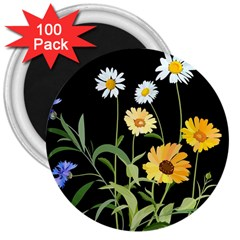Flowers Of The Field 3  Magnets (100 Pack)