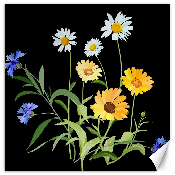 Flowers Of The Field Canvas 16  x 16