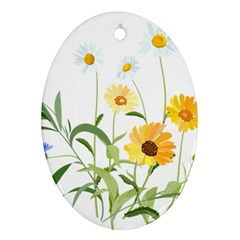 Flowers Flower Of The Field Ornament (oval)