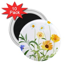Flowers Flower Of The Field 2 25  Magnets (10 Pack)