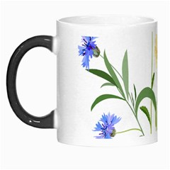 Flowers Flower Of The Field Morph Mugs