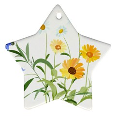 Flowers Flower Of The Field Star Ornament (Two Sides)