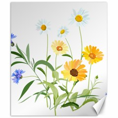 Flowers Flower Of The Field Canvas 20  X 24