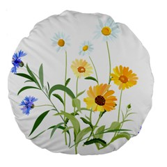 Flowers Flower Of The Field Large 18  Premium Flano Round Cushions