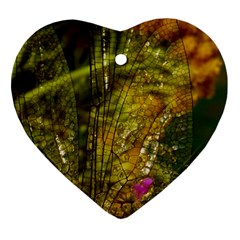 Dragonfly Dragonfly Wing Insect Ornament (Heart)