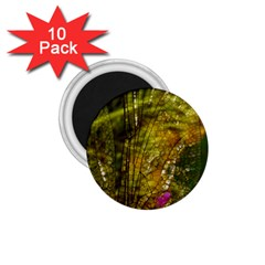 Dragonfly Dragonfly Wing Insect 1 75  Magnets (10 Pack)