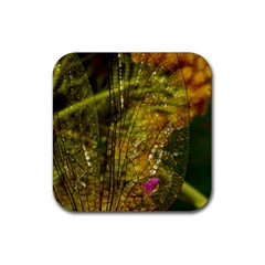 Dragonfly Dragonfly Wing Insect Rubber Square Coaster (4 Pack)