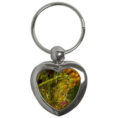 Dragonfly Dragonfly Wing Insect Key Chains (heart)