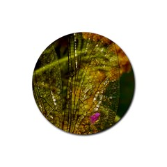 Dragonfly Dragonfly Wing Insect Rubber Round Coaster (4 Pack)