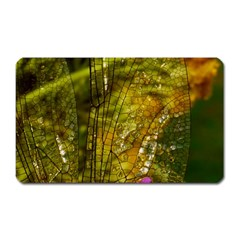 Dragonfly Dragonfly Wing Insect Magnet (rectangular)