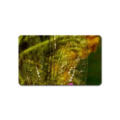 Dragonfly Dragonfly Wing Insect Magnet (Name Card)