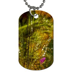 Dragonfly Dragonfly Wing Insect Dog Tag (Two Sides)
