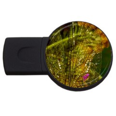 Dragonfly Dragonfly Wing Insect Usb Flash Drive Round (4 Gb)