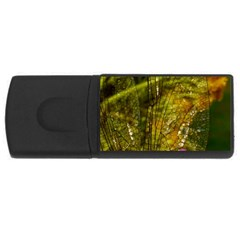 Dragonfly Dragonfly Wing Insect USB Flash Drive Rectangular (4 GB)