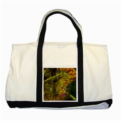 Dragonfly Dragonfly Wing Insect Two Tone Tote Bag