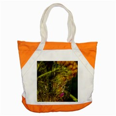 Dragonfly Dragonfly Wing Insect Accent Tote Bag