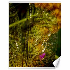 Dragonfly Dragonfly Wing Insect Canvas 18  x 24
