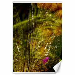 Dragonfly Dragonfly Wing Insect Canvas 20  X 30