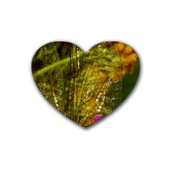 Dragonfly Dragonfly Wing Insect Rubber Coaster (heart)