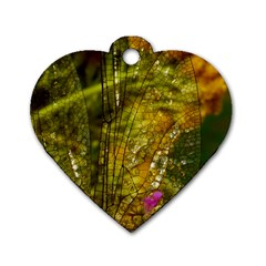 Dragonfly Dragonfly Wing Insect Dog Tag Heart (one Side)