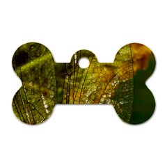 Dragonfly Dragonfly Wing Insect Dog Tag Bone (Two Sides)