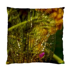 Dragonfly Dragonfly Wing Insect Standard Cushion Case (Two Sides)