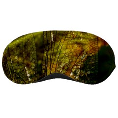 Dragonfly Dragonfly Wing Insect Sleeping Masks