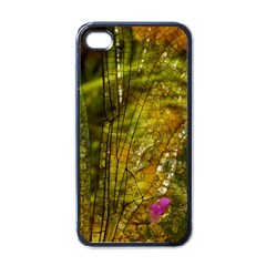 Dragonfly Dragonfly Wing Insect Apple Iphone 4 Case (black)