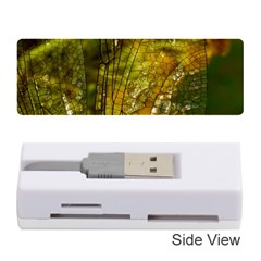 Dragonfly Dragonfly Wing Insect Memory Card Reader (Stick)