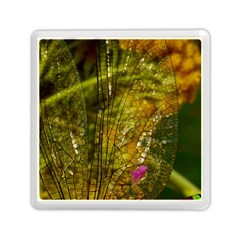 Dragonfly Dragonfly Wing Insect Memory Card Reader (Square)