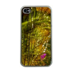 Dragonfly Dragonfly Wing Insect Apple Iphone 4 Case (clear)