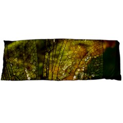 Dragonfly Dragonfly Wing Insect Body Pillow Case Dakimakura (two Sides)