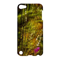 Dragonfly Dragonfly Wing Insect Apple iPod Touch 5 Hardshell Case