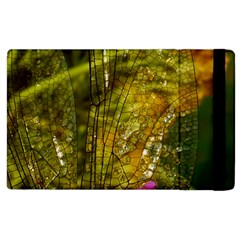 Dragonfly Dragonfly Wing Insect Apple Ipad 2 Flip Case