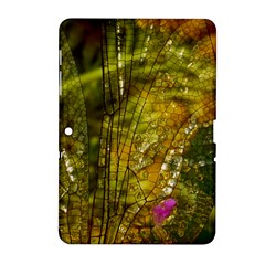 Dragonfly Dragonfly Wing Insect Samsung Galaxy Tab 2 (10 1 ) P5100 Hardshell Case